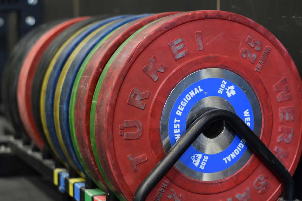 Olympic weightlifting plates